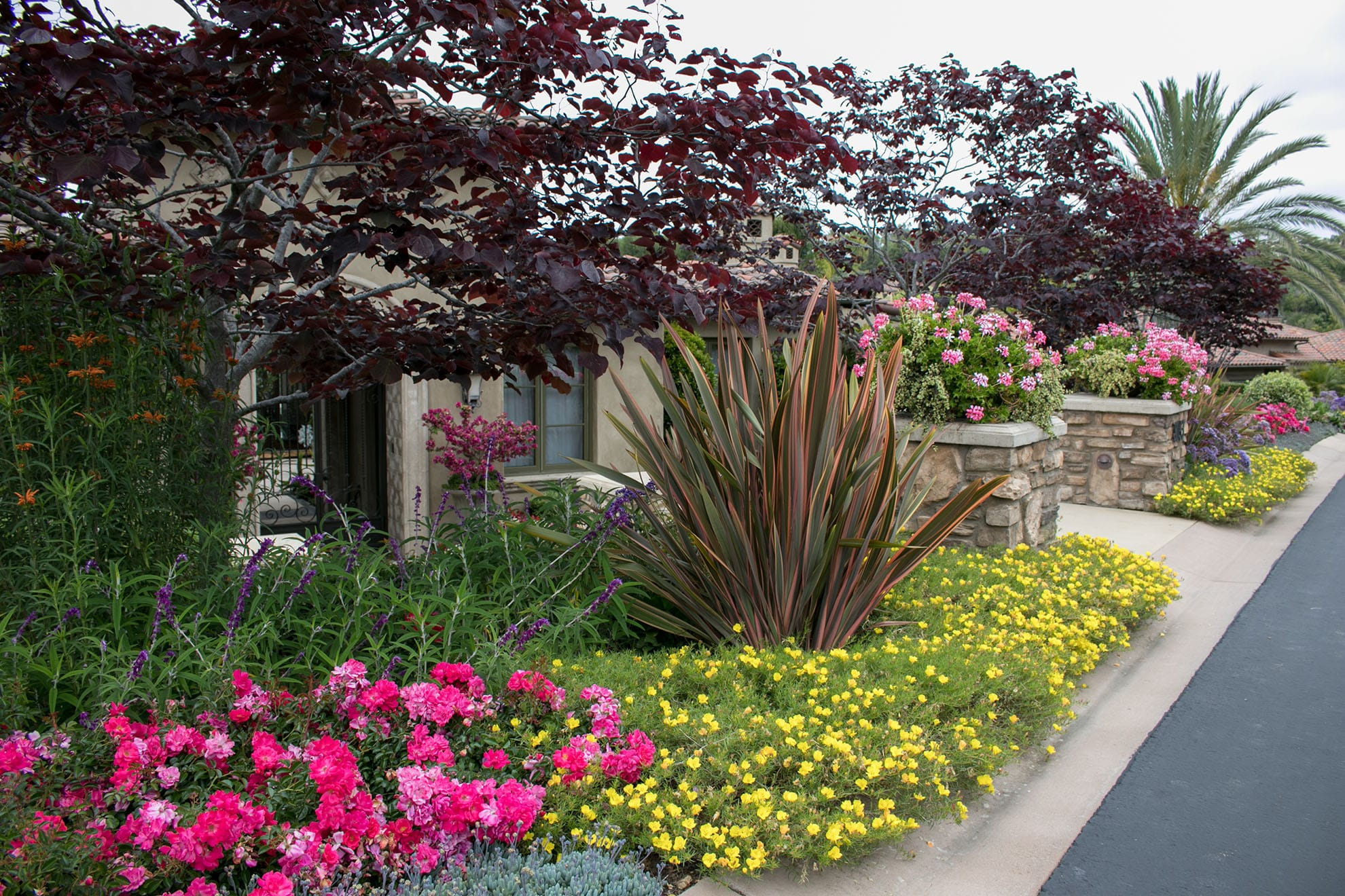 Butterfly Garden Rancho Santa Fe