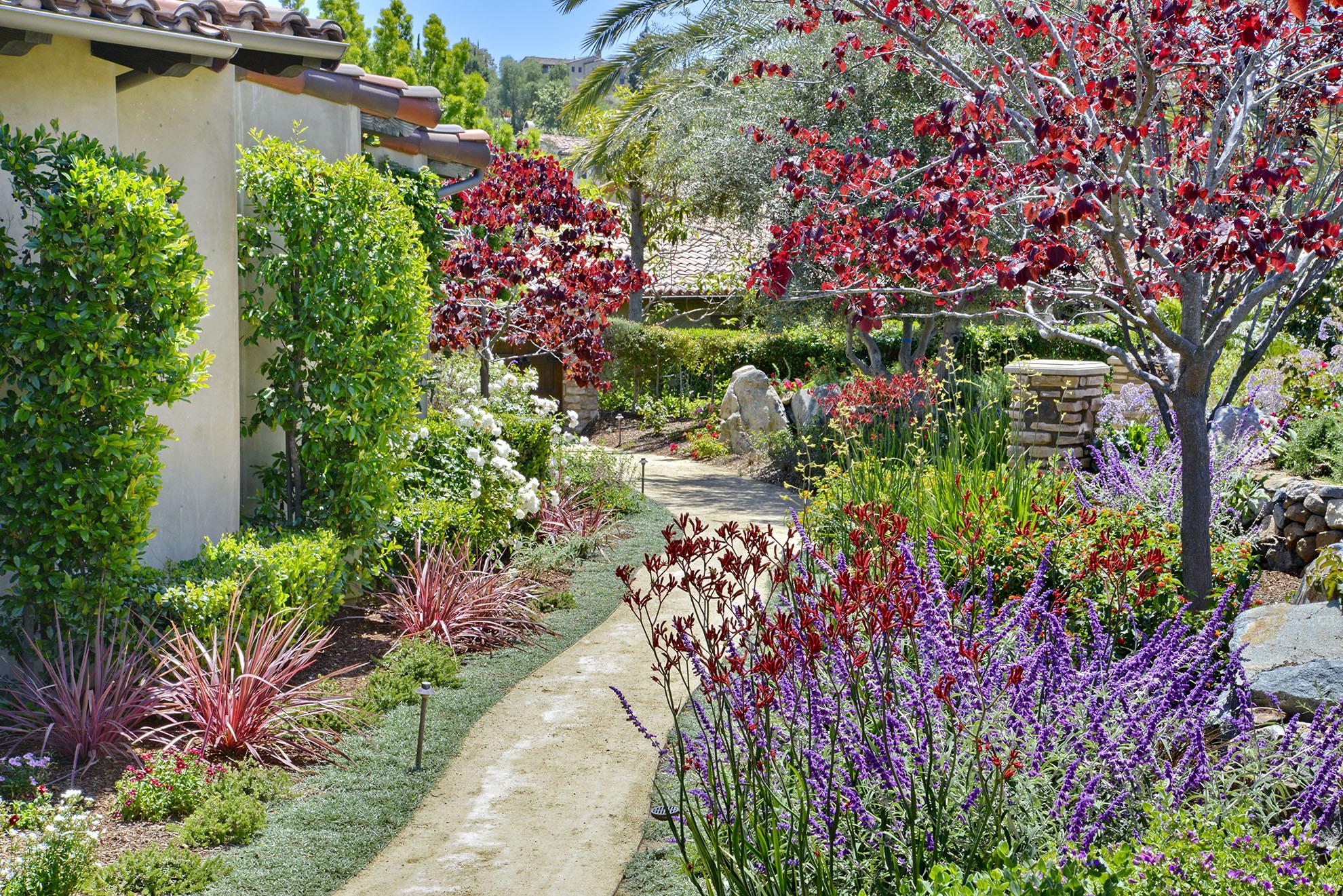 Butterfly Garden Rancho Santa Fe Torrey Pines Landscape Company San Diego Landscape Design Build Maintenance